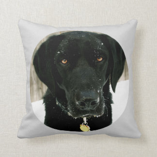 Snow how to Play Nice Black Lab Pillow