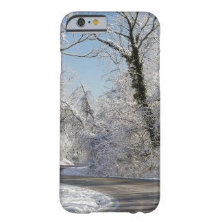 Snow & Ice iPhone Case