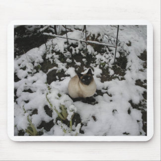 Snow Images, Snow Cat Mouse Mat