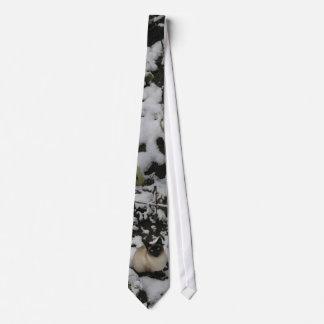 Snow Images, Snow Cat Tie
