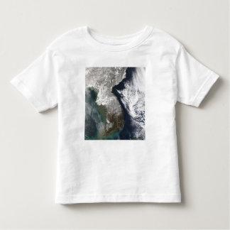 Snow in Korea Toddler T-Shirt