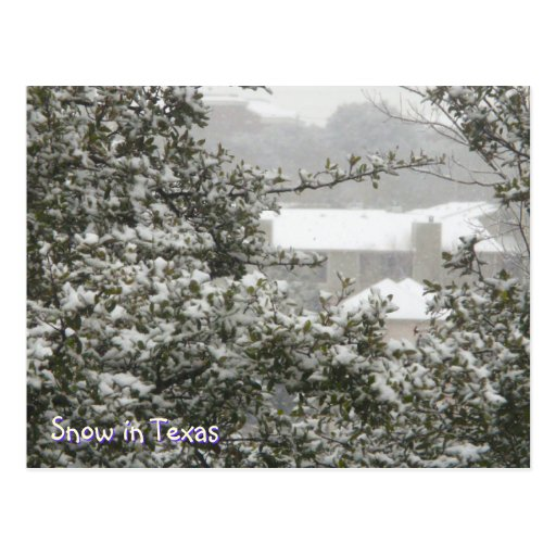 Snow in Texas Postcard