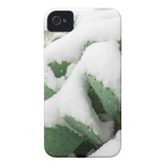 Snow in the Desert iPhone 4 Case-Mate Cases