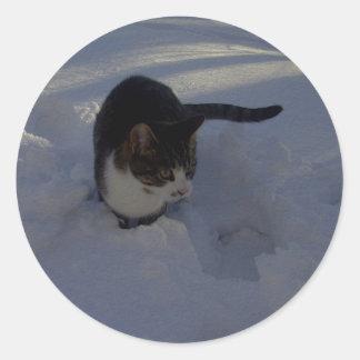 Snow Kitten Round Sticker