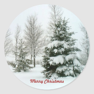 Snow-Laden Trees, Merry Christmas Classic Round Sticker