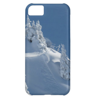 Snow Landscape iPhone 5C Case