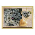 snow-leopard-00457