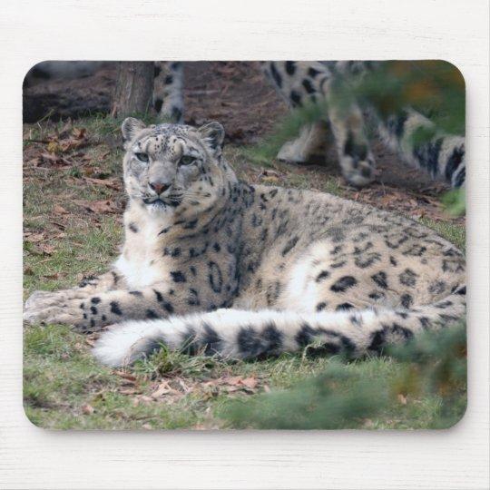 snow leopard 26 mouse mat