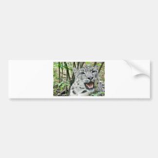 Snow Leopard 2 Bumper Sticker