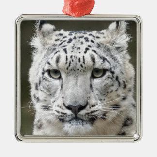 Snow Leopard Christmas Ornament