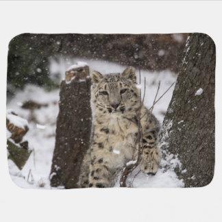 Snow Leopard Cub Baby Blanket