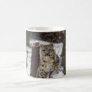 Snow Leopard Cub Basic White Mug