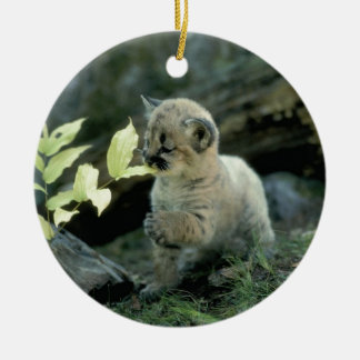 Snow Leopard Cub Christmas Ornament