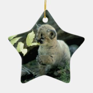 Snow Leopard Cub Christmas Ornament