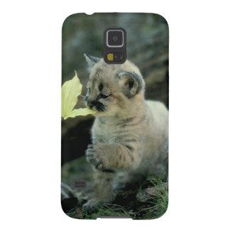 Snow Leopard Cub Galaxy S5 Covers