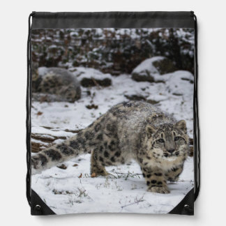 Snow Leopard Cub Stalking Birds Drawstring Bag