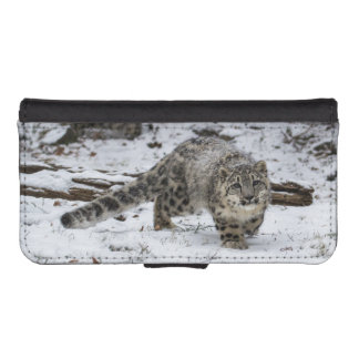 Snow Leopard Cub Stalking Birds iPhone SE/5/5s Wallet Case