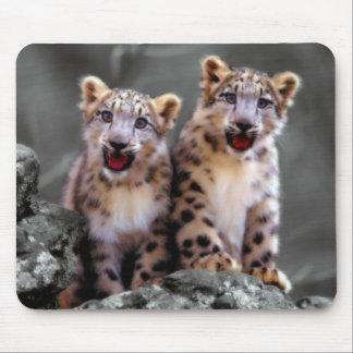 Snow Leopard Cubs Mouse Pad