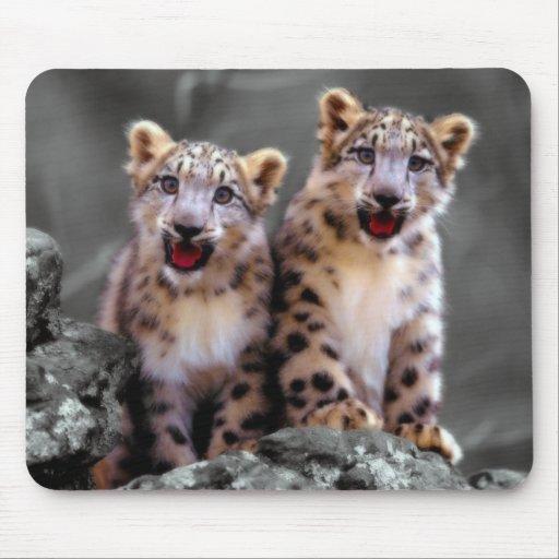 Snow Leopard Cubs Mouse Pads