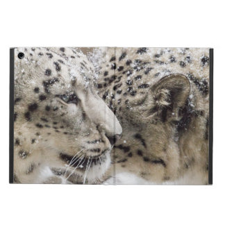 Snow Leopard Cuddle iPad Air Case