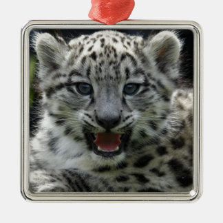 Snow Leopard Kitten Christmas Ornament