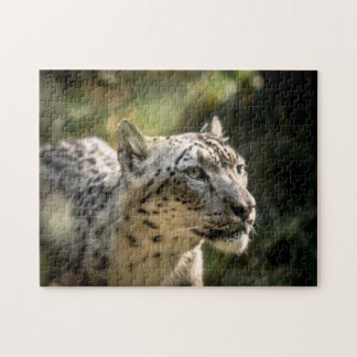 Snow Leopard - Medium Jigsaw Puzzle