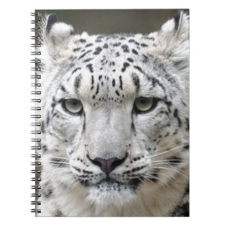 Snow Leopard Notebooks