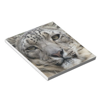 Snow Leopard  Notepad