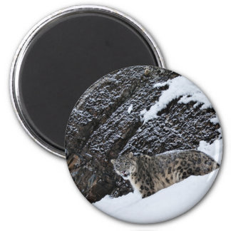 Snow Leopard on the Mountain 6 Cm Round Magnet