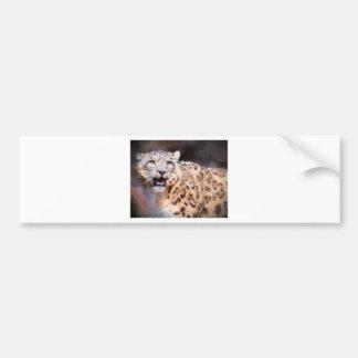 Snow Leopard Painting Bumper Sticker