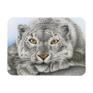 Snow Leopard Premium Magnet
