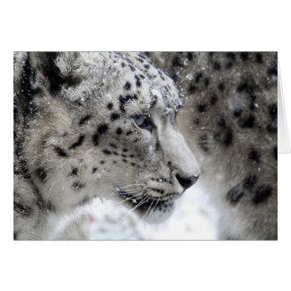 Snow Leopard Profile Portrait Card