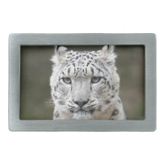 Snow Leopard Rectangular Belt Buckles