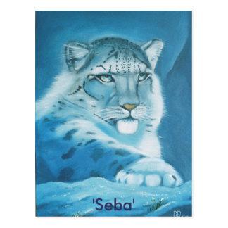 snow leopard, 'Seba' Postcard