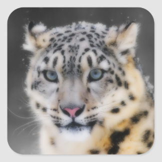 Snow Leopard Square Sticker