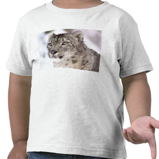 snow leopard t shirt
