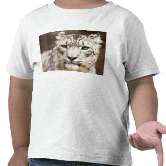 Snow Leopard Tshirts