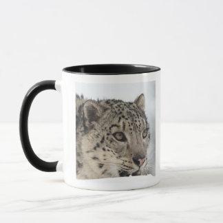Snow leopard (Uncia uncia) 2 Mug
