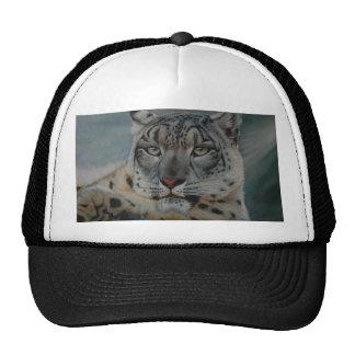 snow leopard winter cap