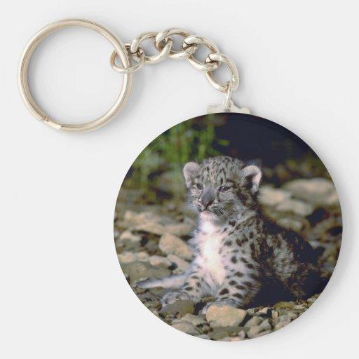 Snow leopard, young cub keychain