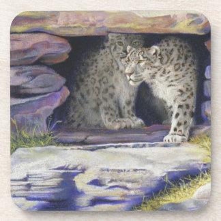 snow leopards coaster