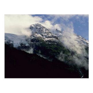 Snow Line Divide Postcard