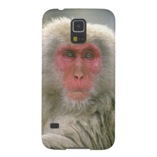 Snow Monkey Couple, Japanese Macaque, Galaxy S5 Case