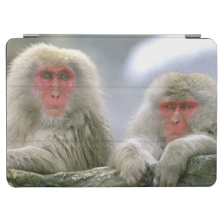 Snow Monkey Couple, Japanese Macaque, iPad Air Cover