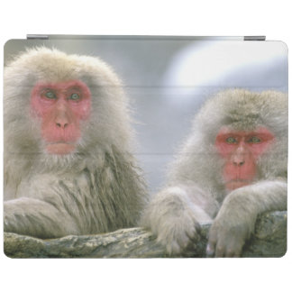 Snow Monkey Couple, Japanese Macaque, iPad Cover