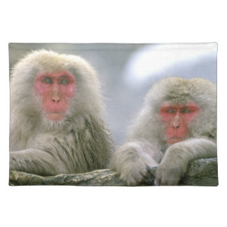 Snow Monkey Couple, Japanese Macaque, Placemat