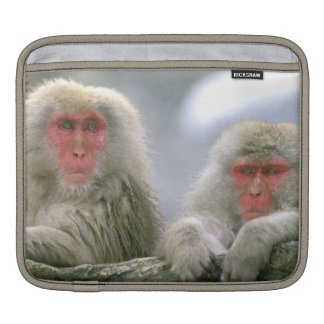 Snow Monkey Couple, Japanese Macaque, Sleeves For iPads