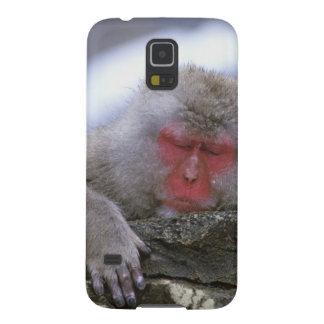 Snow Monkey Mother & Child, Jigokudani, Nagano, Cases For Galaxy S5