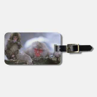 Snow Monkey Mother & Child, Jigokudani, Nagano, Luggage Tag