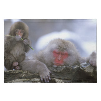 Snow Monkey Mother & Child, Jigokudani, Nagano, Placemat